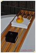 太魯閣晶英搶先體驗:超可愛的鴨鴨溫度計