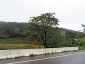 福人、牛路崎:IMG_0725.JPG
