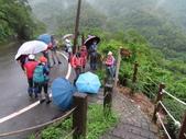 永安景觀、八卦茶園:IMG_4536.JPG