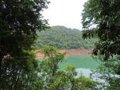 永安景觀、八卦茶園:IMG_4549.JPG