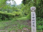 中坑古道:IMG_0360.JPG