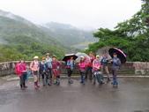 永安景觀、八卦茶園:IMG_4526.JPG