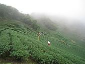 台北捷兔:IMG_2615.jpg