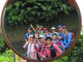 永安景觀、八卦茶園:IMG_4610.JPG