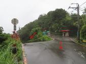 永安景觀、八卦茶園:IMG_4529.JPG