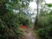 石門山群峰:DSC06595.JPG