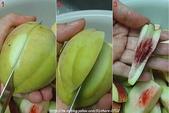 水果酒醋釀造屋:話梅醃桃作法-3