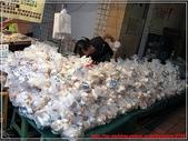 菜市場真FUN:白靈菇牆-1