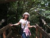 竹坑溪步道:DSCF0896.JPG