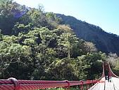 虎山:DSC00690.JPG