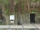樹屋vs德記洋行:DSC01579.JPG