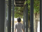 樹屋vs德記洋行:DSC01587.JPG