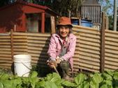 小菜園:DSCF1137.JPG