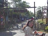 騎鐵馬:DSC00391.JPG