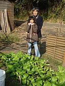 小菜園:DSC01557.jpg