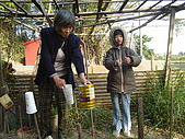 小菜園:DSC01549.JPG