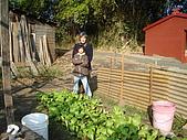 小菜園:DSC01558.JPG