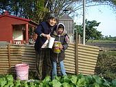 小菜園:DSC01539.JPG