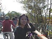 騎鐵馬:DSC00409.JPG
