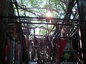 樹屋vs德記洋行:DSC01597.JPG