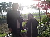 小菜園:DSC01555.JPG