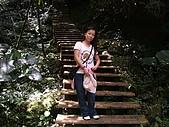 竹坑溪步道:DSCF0901.JPG