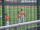2006  8/25  牛對獅  :該死的網子