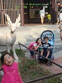 壽山動物園半日遊:CAM01755.jpg