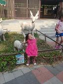 壽山動物園半日遊:CAM01756.jpg