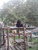 壽山動物園半日遊:CAM01776.jpg