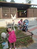 壽山動物園半日遊:CAM01754.jpg
