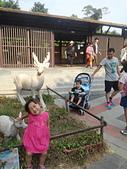壽山動物園半日遊:CAM01753.jpg
