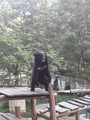 壽山動物園半日遊:CAM01780.jpg