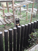壽山動物園半日遊:CAM01784.jpg