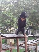 壽山動物園半日遊:CAM01777.jpg