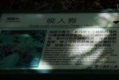 103年06月02日南仁山自然生態保護區-南仁湖:南仁山自然生態保護區-南仁湖_019.JPG