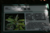 103年06月02日南仁山自然生態保護區-南仁湖:南仁山自然生態保護區-南仁湖_021.JPG
