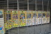 103年08月09日搭火車環島遊記-岡山火車站:103年08月09日與治平兒搭火車環島二日遊_14-岡山火車站.JPG