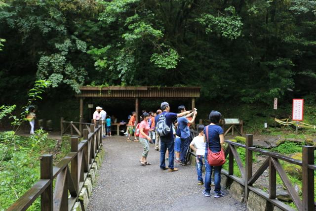 103年07月12日第廿七次露營-達觀山自然保護區巨木群:IMG_5114.JPG