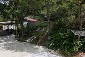103年06月02日南仁山自然生態保護區-南仁湖:南仁山自然生態保護區-南仁湖_008.JPG