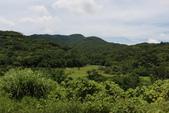 103年06月02日南仁山自然生態保護區-南仁湖:南仁山自然生態保護區-南仁湖_015.JPG