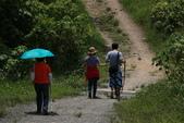 103年06月02日南仁山自然生態保護區-南仁湖:南仁山自然生態保護區-南仁湖_016.JPG
