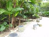 富陽自然生態公園:P_20190914_164649.jpg