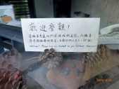 草山玉溪:P1140338.jpg