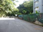富陽自然生態公園:P1140269.jpg