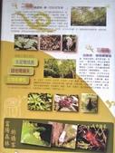富陽自然生態公園:P_20190914_165013-1.jpg