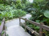 富陽自然生態公園:P1140276.jpg