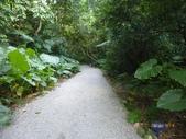 富陽自然生態公園:P1140277.jpg