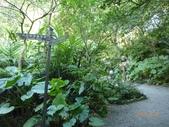 富陽自然生態公園:P1140278.jpg