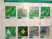富陽自然生態公園:P_20190914_164555.jpg
